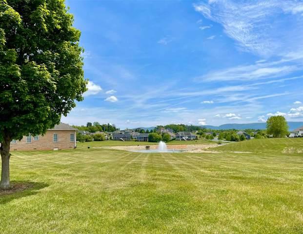 116 Lake View Cir, WAYNESBORO, VA 22980 (MLS #619048) :: Jamie White Real Estate