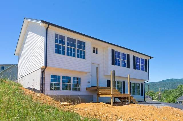 235 Locustdale Loop, Shenandoah, VA 22849 (MLS #619142) :: Jamie White Real Estate