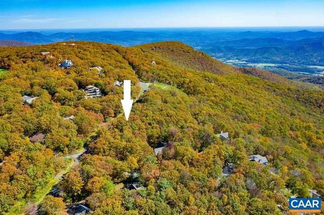 0 Beech Dr, Wintergreen Resort, VA 22967 (MLS #619922) :: KK Homes