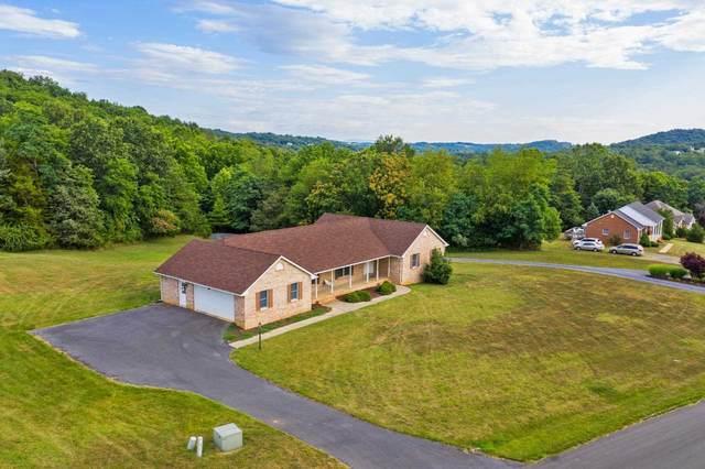 236 River View Rd, Verona, VA 24482 (MLS #620024) :: KK Homes
