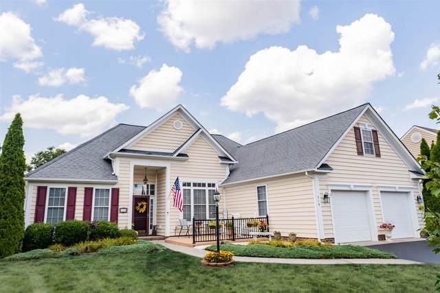 519 Old Charleston Rd, WAYNESBORO, VA 22980 (MLS #620108) :: Jamie White Real Estate