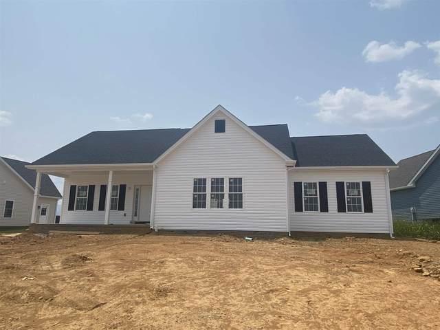 133 Stone Dr, Stuarts Draft, VA 24477 (MLS #620267) :: KK Homes