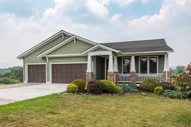 40 Cora Ln, LEXINGTON, VA 24450 (MLS #620269) :: Real Estate III