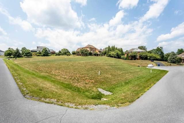 115 York Pl, ROCKINGHAM, VA 22801 (MLS #620359) :: KK Homes