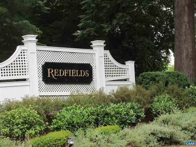 871 Swan Ridge Rd, CHARLOTTESVILLE, VA 22903 (MLS #620371) :: KK Homes