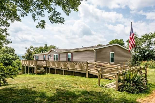 2473 Hillyard Dr, BROADWAY, VA 22815 (MLS #620442) :: KK Homes