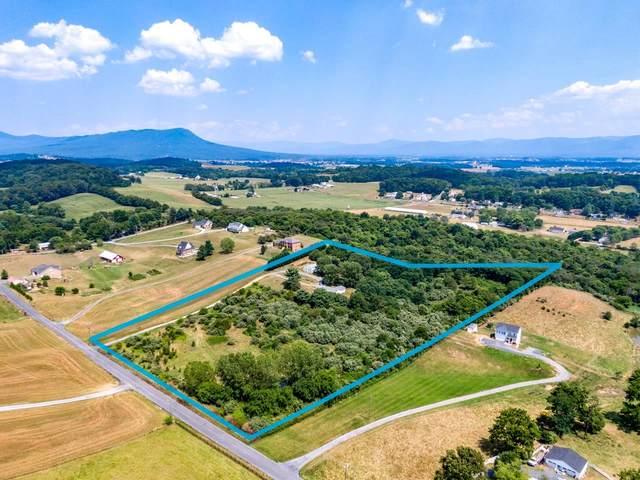 3167 N Whitesel Church Rd, Mount Crawford, VA 22841 (MLS #620532) :: Real Estate III