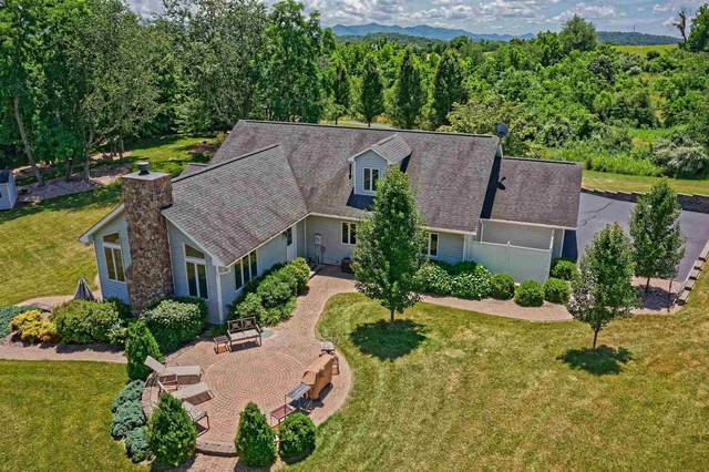 435 Eastview Ln, Raphine, VA 24472 (MLS #620663) :: KK Homes
