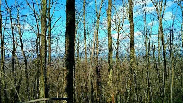 TBD Fox Ridge Ln, WAYNESBORO, VA 22980 (MLS #620745) :: Kline & Co. Real Estate