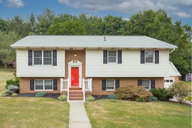 2946 Koffee Ln, ROCKINGHAM, VA 22801 (MLS #620756) :: Jamie White Real Estate