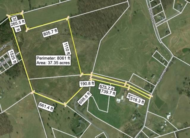 TBD- 1 Autumn Ln, ROCKINGHAM, VA 22801 (MLS #620834) :: KK Homes