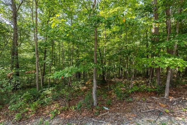 Lot 2 Scenic Hills Dr, WAYNESBORO, VA 22980 (MLS #620878) :: KK Homes