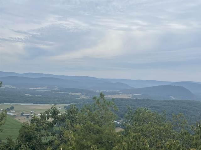 000 Mountain Top Ln, BROADWAY, VA 22815 (MLS #621181) :: Jamie White Real Estate