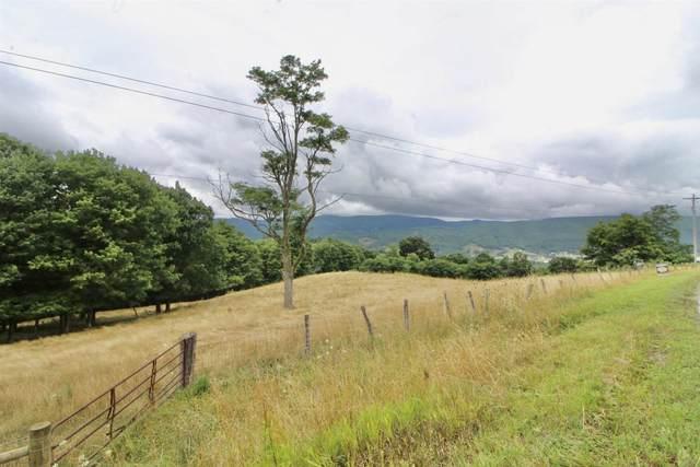 458 Hevener Farm Dr, Monterey, VA 24465 (MLS #621203) :: KK Homes