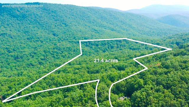 TBD Chestnut Ln, Lyndhurst, VA 22952 (MLS #621289) :: Jamie White Real Estate