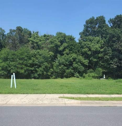 313, 315 Willow Oaks Dr 313 And 315, ELKTON, VA 22827 (MLS #621444) :: Kline & Co. Real Estate