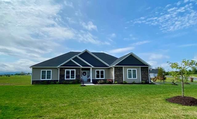 429 Peterson Ln, WAYNESBORO, VA 22980 (MLS #621637) :: Jamie White Real Estate