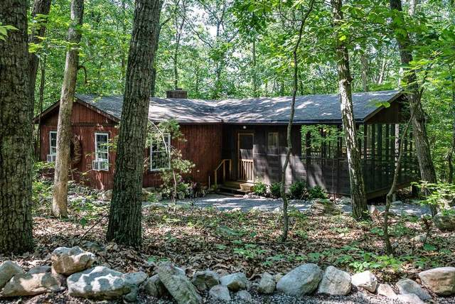 241 Blue Smoke Ln, New Market, VA 22844 (MLS #621716) :: Jamie White Real Estate