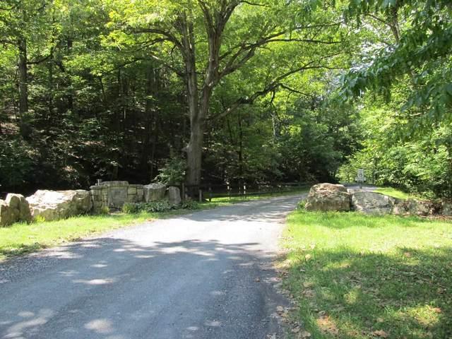 1 TBD (Lot 23) Mountain Run Rd #23, Churchville, VA 24421 (MLS #621721) :: Real Estate III