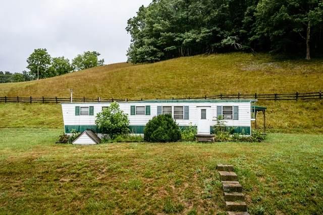 10159 Highland Tpke, MCDOWELL, VA 24458 (MLS #621761) :: KK Homes