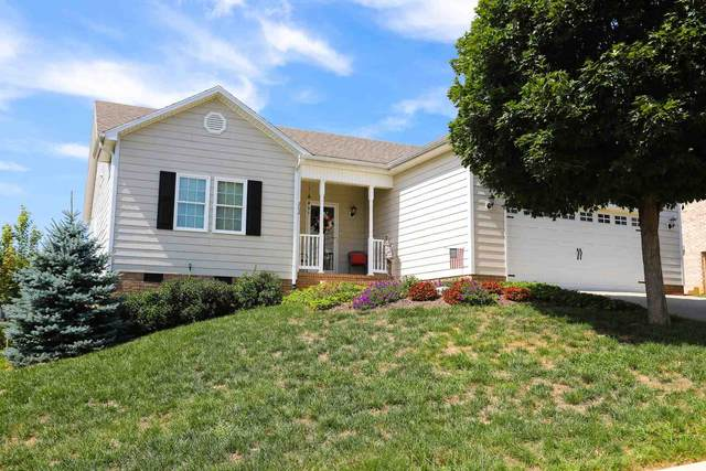 202 Stonewall Jackson Blvd, STAUNTON, VA 24401 (MLS #621970) :: KK Homes