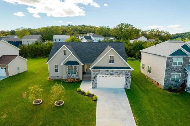 4347 Wiltshire St, ROCKINGHAM, VA 22802 (MLS #622528) :: KK Homes