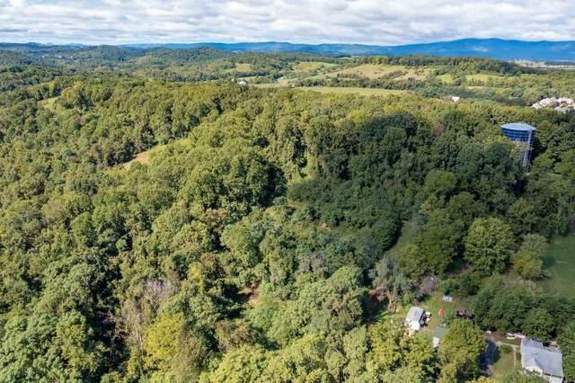 TBD Woodcrest Rd, STAUNTON, VA 24401 (MLS #622530) :: Jamie White Real Estate
