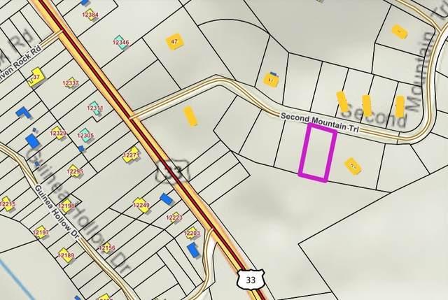 tbd Second Mountain Trl #17, HINTON, VA 22831 (MLS #622544) :: Jamie White Real Estate