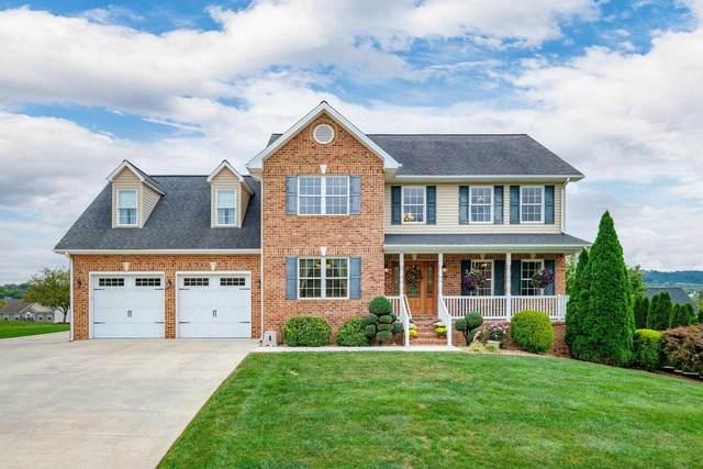 255 Truman Dr, BROADWAY, VA 22815 (MLS #623078) :: Kline & Co. Real Estate