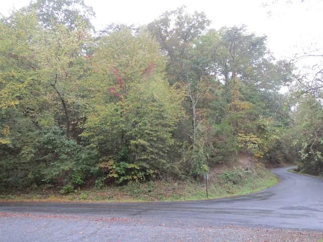 00 Stonewall Dr, Basye, VA 22810 (MLS #623090) :: Jamie White Real Estate