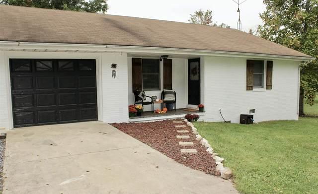 31 Old Back Rd, Raphine, VA 24472 (MLS #623128) :: KK Homes