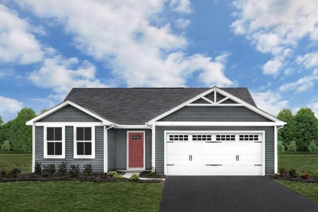 2095 Tailor Dr, ROCKINGHAM, VA 22801 (MLS #623154) :: KK Homes
