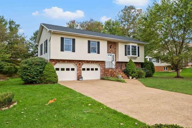305 Periwinkle Ln, New Market, VA 22844 (MLS #623309) :: Real Estate III