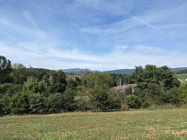 TBD Muddy Creek Rd, ROCKINGHAM, VA 22802 (MLS #623384) :: KK Homes