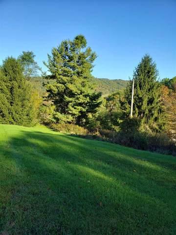 372 Klondike Rd, Warm Springs, VA 24484 (MLS #623411) :: KK Homes