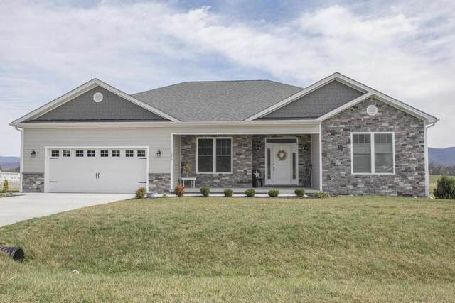 10060 Dalmatian Dr, Mcgaheysville, VA 22840 (MLS #623420) :: KK Homes
