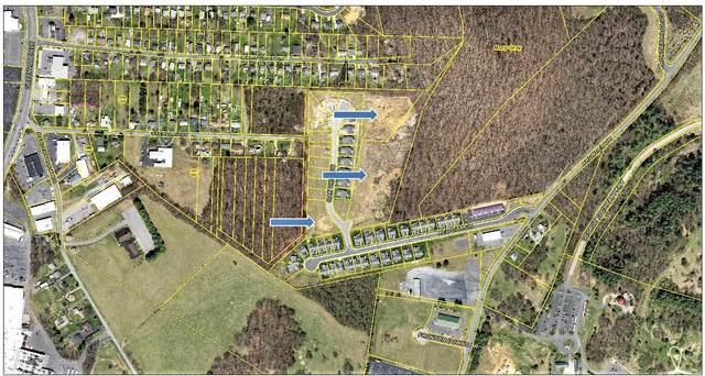 210 Frontier Dr 15 Thru 33, Plu, STAUNTON, VA 24401 (MLS #623422) :: KK Homes