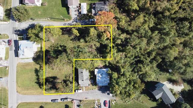 1010 Nelson St, STAUNTON, VA 24401 (MLS #623474) :: Kline & Co. Real Estate