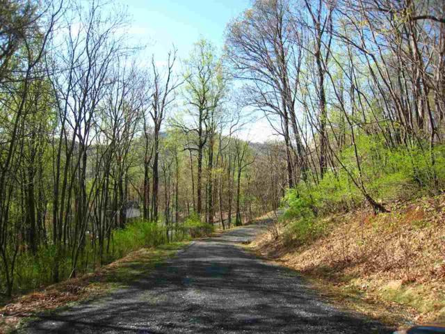 Tree House Pl Lot 42, Nellysford, VA 22958 (MLS #530643) :: Strong Team REALTORS