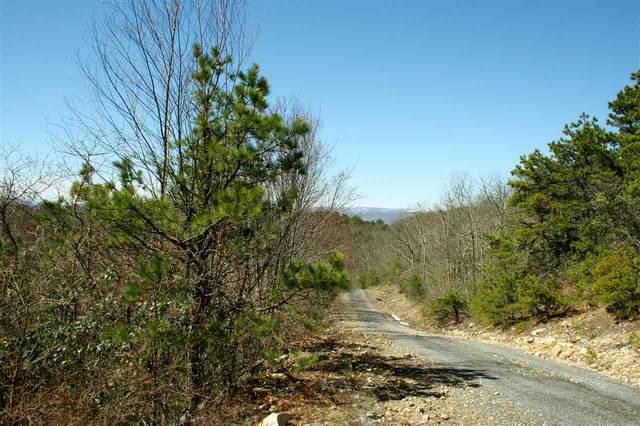97 N Summit Dr, Monterey, VA 24465 (MLS #537712) :: Jamie White Real Estate