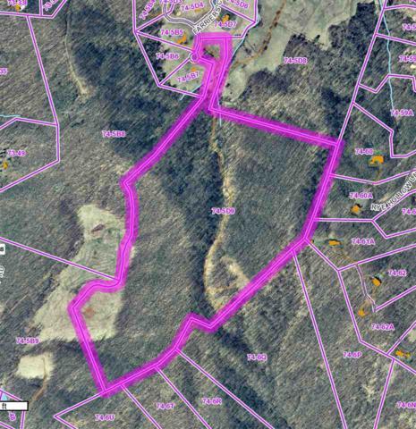 0 Ragged Mountain Ln B20, CHARLOTTESVILLE, VA 22903 (MLS #563171) :: Real Estate III