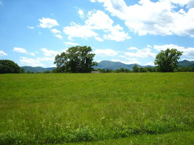 Phillips Ln #7, Nellysford, VA 22958 (MLS #563286) :: Real Estate III
