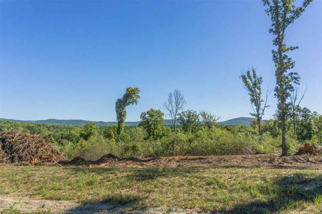 LOT 12 Lofton Ln #12, North Garden, VA 22959 (MLS #568816) :: Jamie White Real Estate