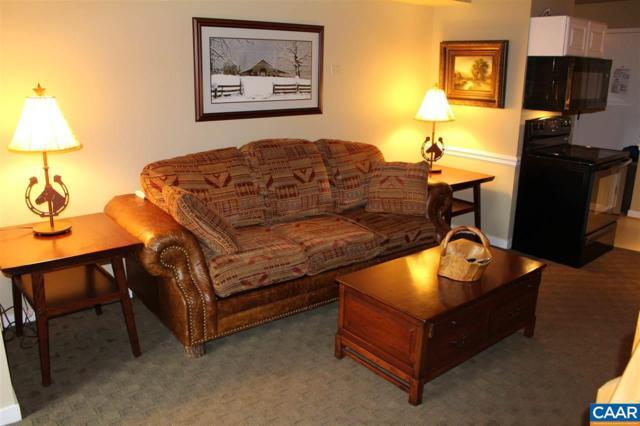 171 Mountain Inn Condos, WINTERGREEN, VA 22958 (MLS #569048) :: Strong Team REALTORS