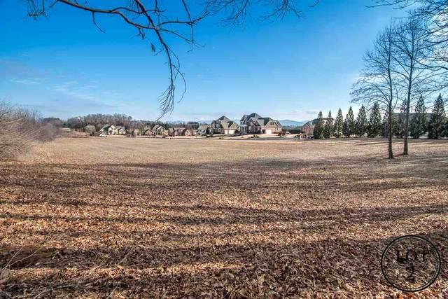 513 Chateau Ln, WAYNESBORO, VA 22980 (MLS #571865) :: KK Homes