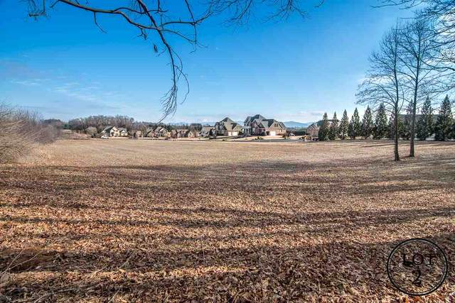 513 Chateau Ln, WAYNESBORO, VA 22980 (MLS #571865) :: Real Estate III