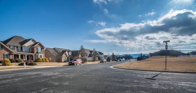 501 Chateau Ln, WAYNESBORO, VA 22980 (MLS #571866) :: Real Estate III