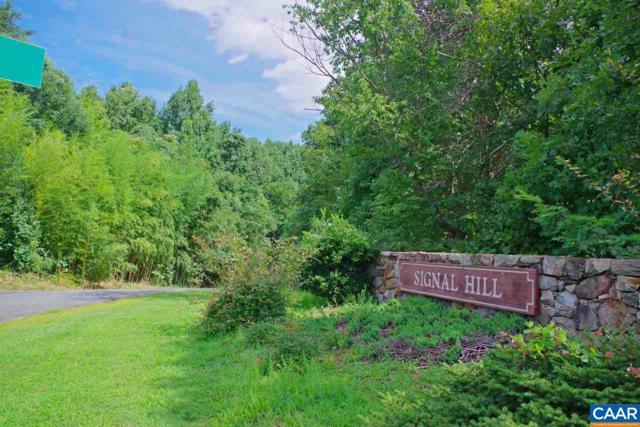 3 Signal Hill Dr, AFTON, VA 22920 (MLS #571901) :: Strong Team REALTORS
