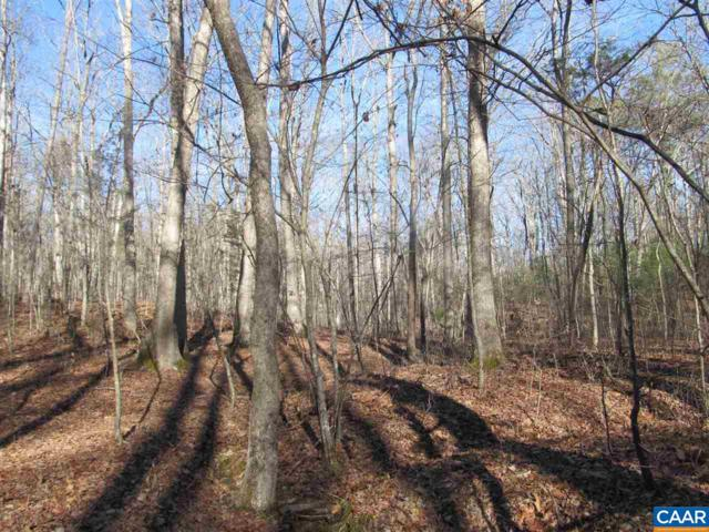 Lot 7 Blenheim Rd, SCOTTSVILLE, VA 24590 (MLS #572253) :: Strong Team REALTORS
