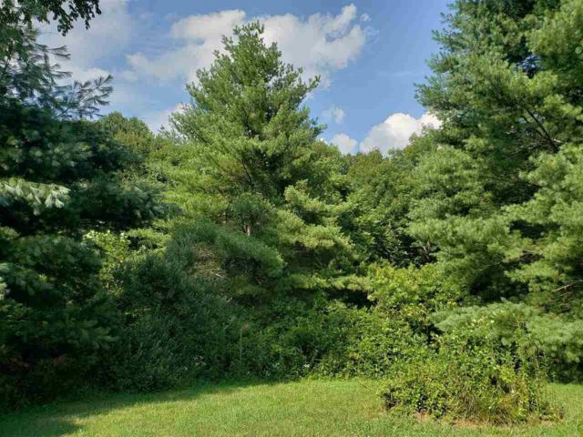 746-A Albevanna Spring Rd #1, SCOTTSVILLE, VA 24590 (MLS #579375) :: Jamie White Real Estate